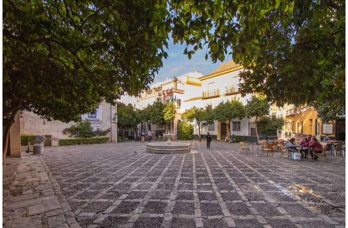 Apartment in Alcazar Pool Villa, San Bernardo - 51