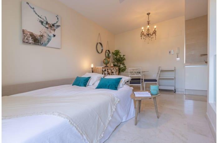 Apartment in Lumbreras Deluxe Suite, San Lorenzo - 24