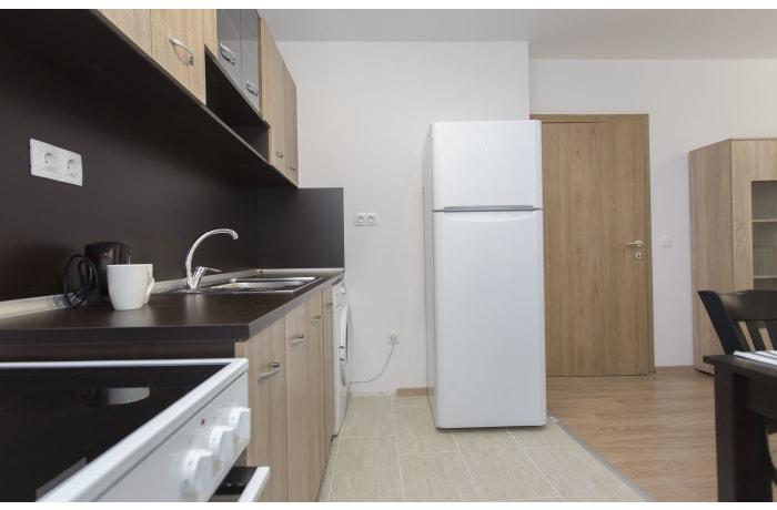 Apartment in Ovche Pole I, Sofia Center - 9