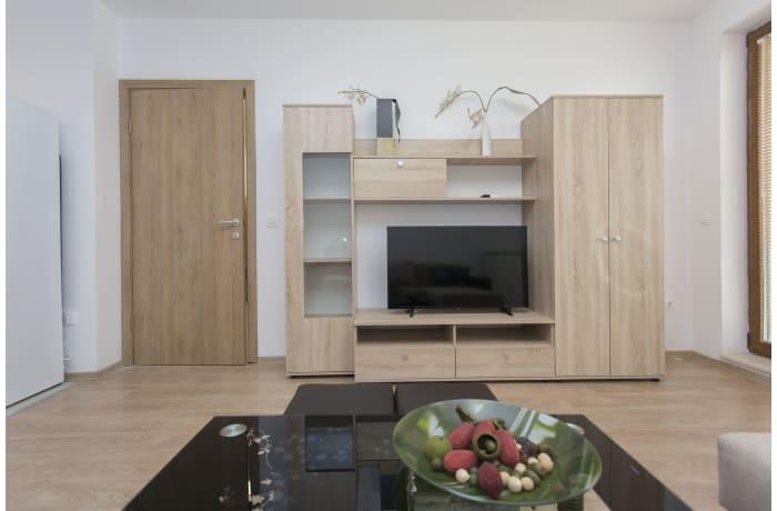 Apartment in Ovche Pole I, Sofia Center - 5