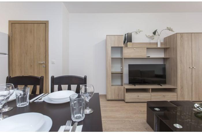Apartment in Ovche Pole II, Sofia Center - 5
