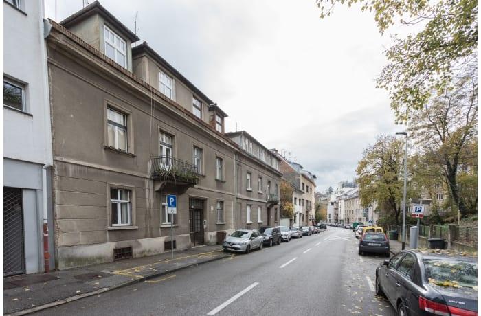 Apartment in Profesor ZG32, Kaptol - 12