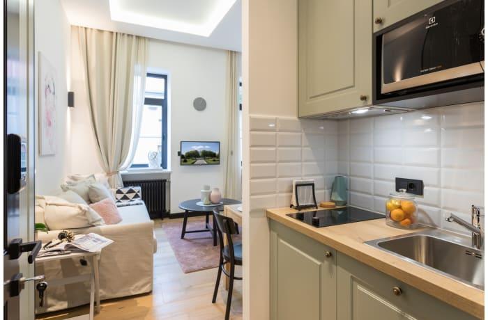 Apartment in Nova Gunduliceva Triplex ZG31, Lower Town - 31