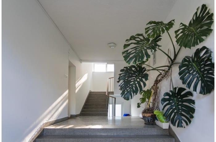 Apartment in Brozova ZG19, Valentici - 13