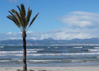 Corredores de seguros en Palma de Mallorca