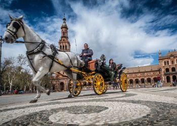 Corredores de seguros en Sevilla