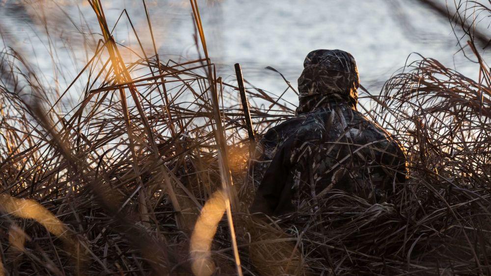 hunting litezall