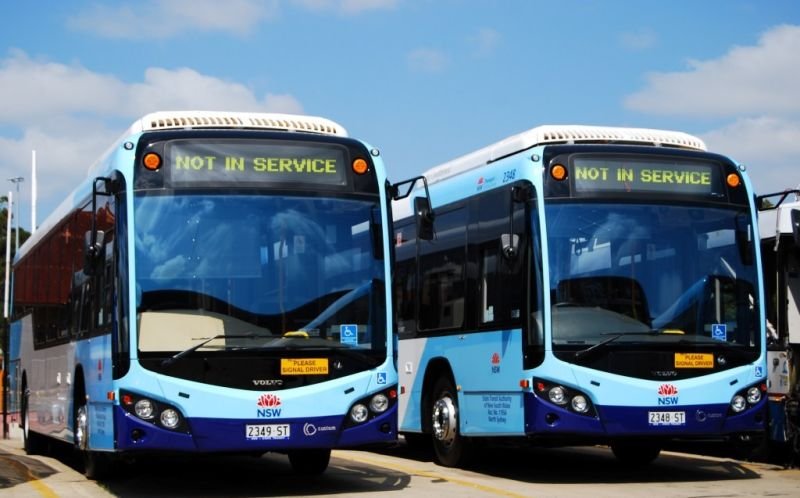 School Bus Services