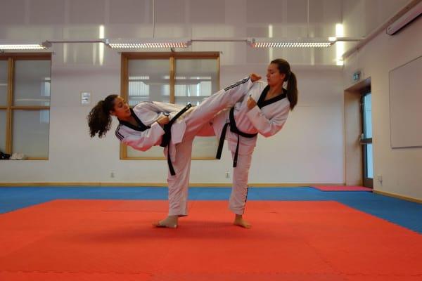 Kaidi Taekwondo  - Swiftr partner