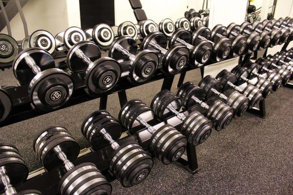 Parsa Power - Gym & Health Studio - Swiftr partner