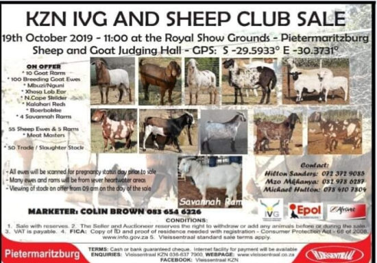 livestock auction listing Sheep and goat auction