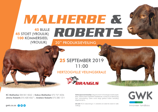 livestock auction listing MALHERBE & ROBERTS 20TH PRODUCTION SALE