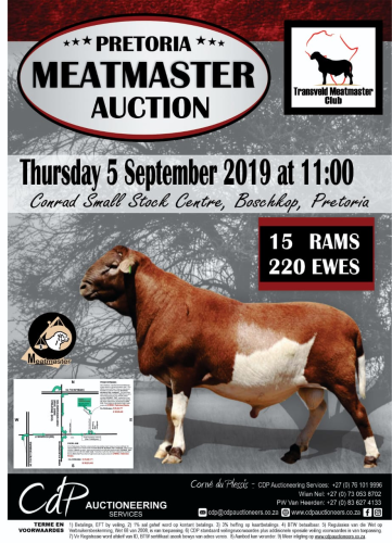 livestock auction listing Meetmaster Auction