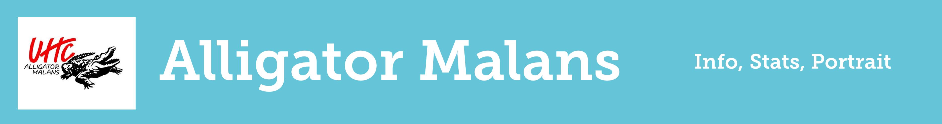 Kästchen Unterseite Malans destop