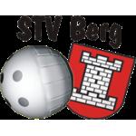 STV Berg