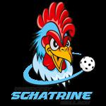 Schatrine Bellach