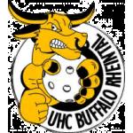 Buffalo Rheintal