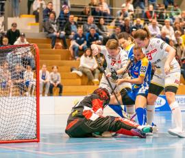 saison 13/14 - UHC Lions Konolfingen