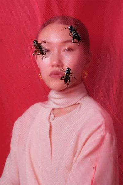 *Crickets* - © @ Laurence Kubski, Swiss Design Awards Blog