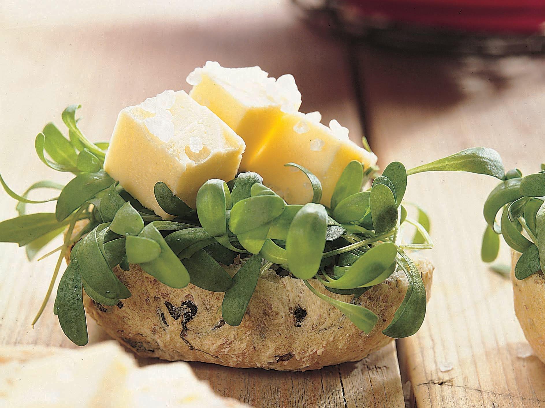 Hüttenkäse-Brötchen mit Meersalz-Butter und Kresse
