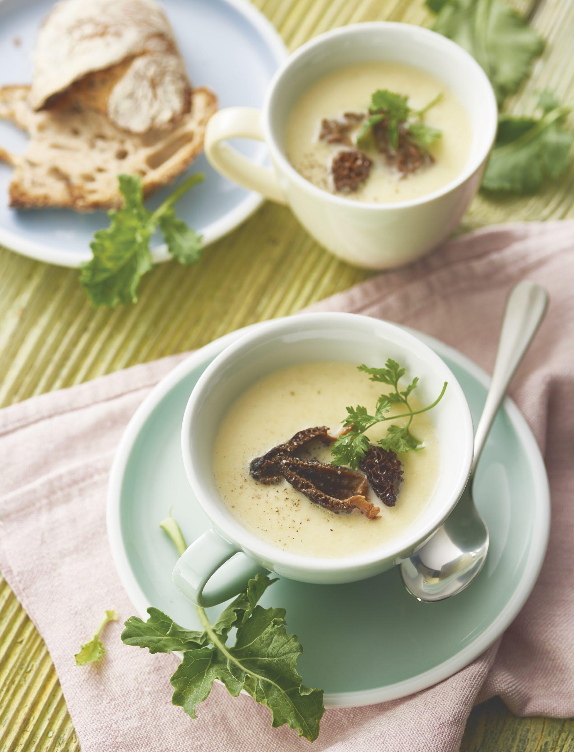 Kohlrabi-Morchel-Suppe