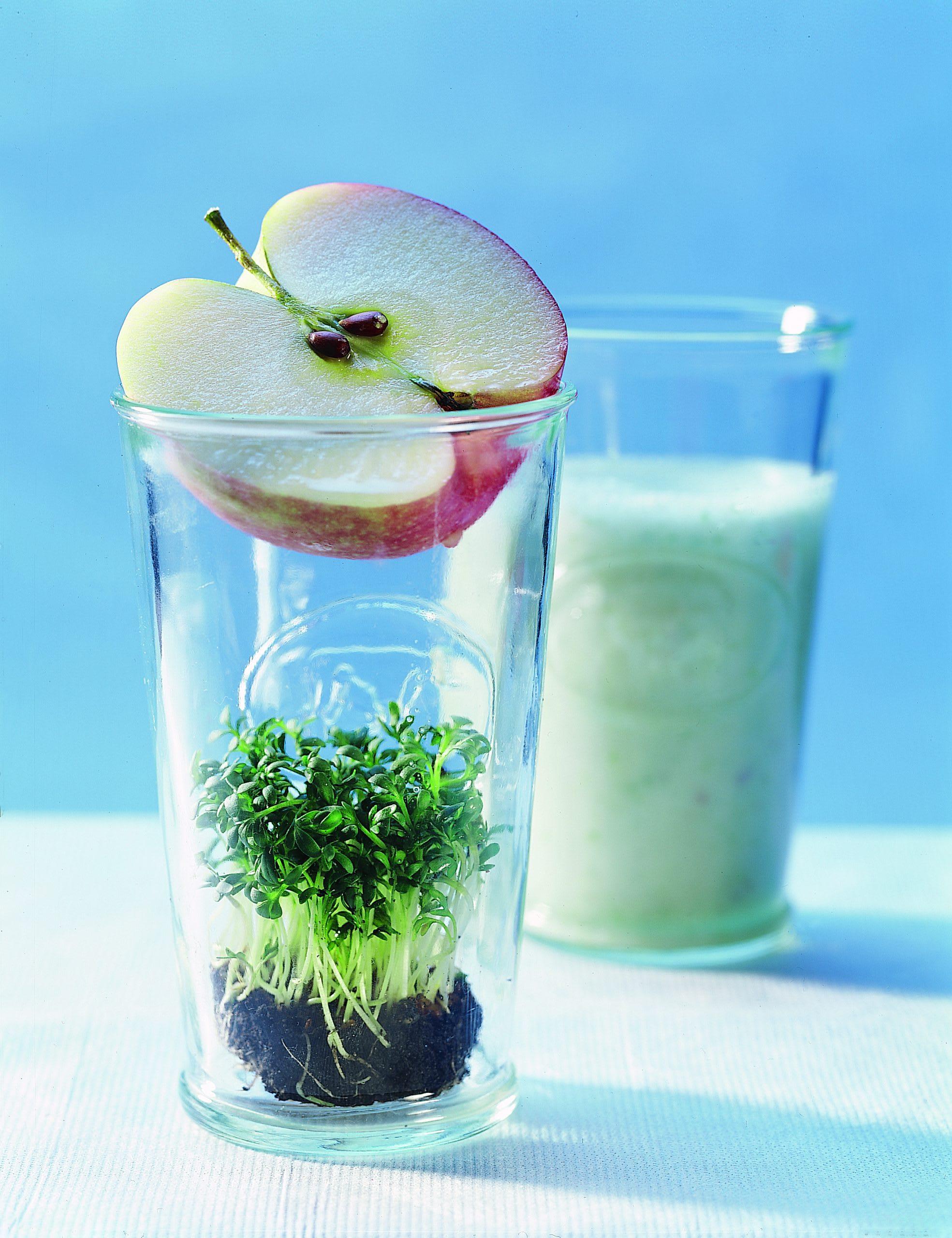 Kresse-Apfel-Shake