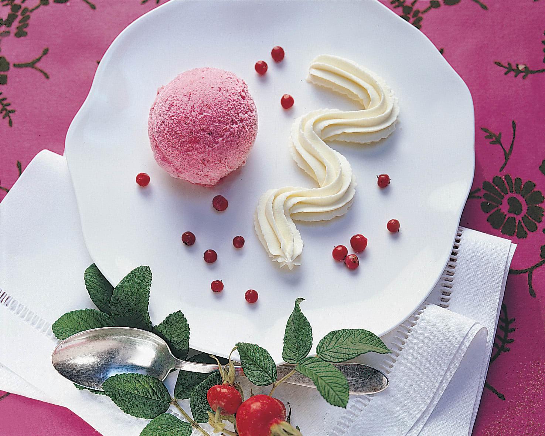 Sorbet aux airelles rouges et crème au chocolat blanc