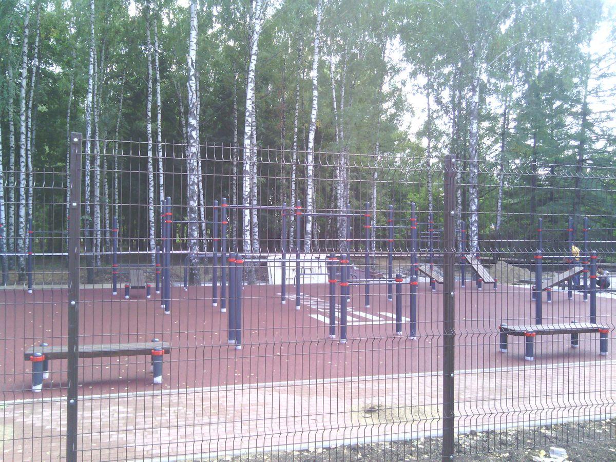 Ryazan - Street Workout Park - Чайка