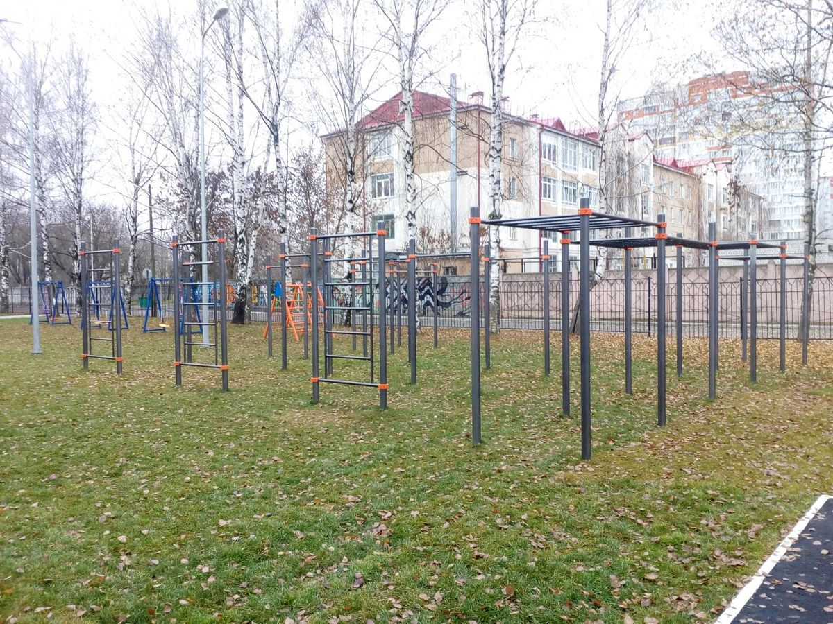 Bryansk - Street Workout Park - 241028