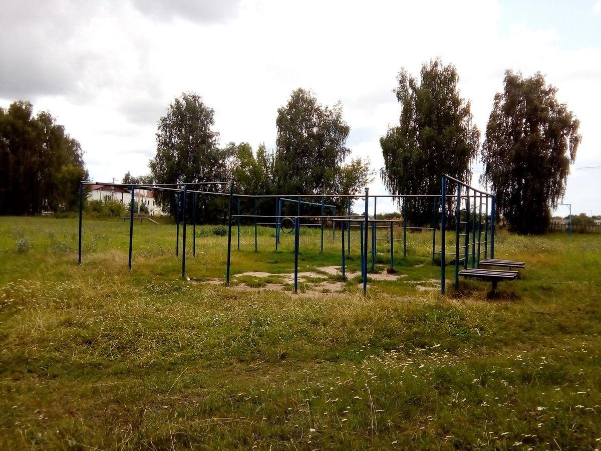 Gorodetskoe - Street Workout Park - 242239