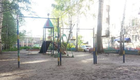 Tomsk - Calisthenics Park - Абрикос