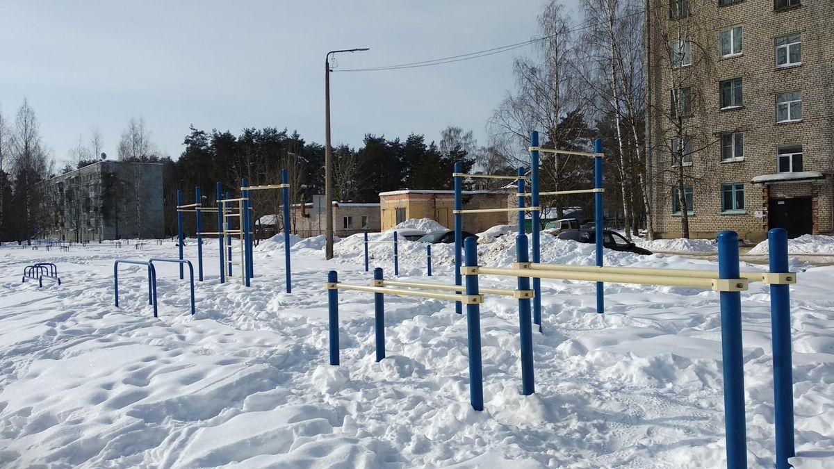 Vypolzovskoe - Calisthenics Gym - 171054