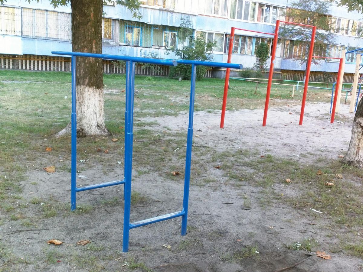 Kyiv - Street Workout Park - Лесок