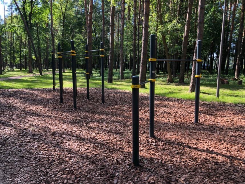 Barvikhinskoe - Outdoor Gym - 143082