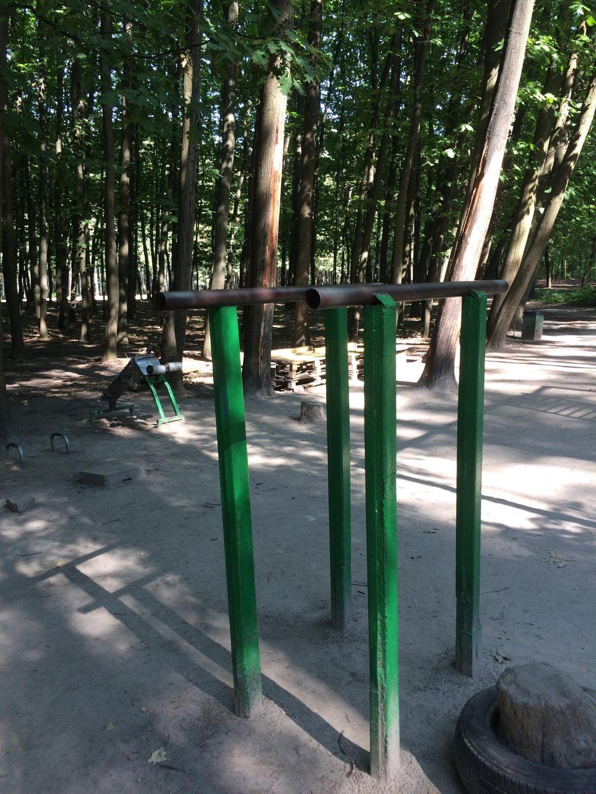 Kyiv - Calisthenics Gym - Жмеринський Ліс // Zhmerenskyi Forest