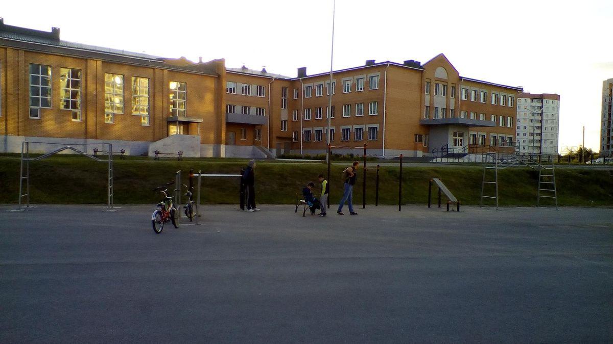 Yelets - Street Workout Park - Шин Шиныч