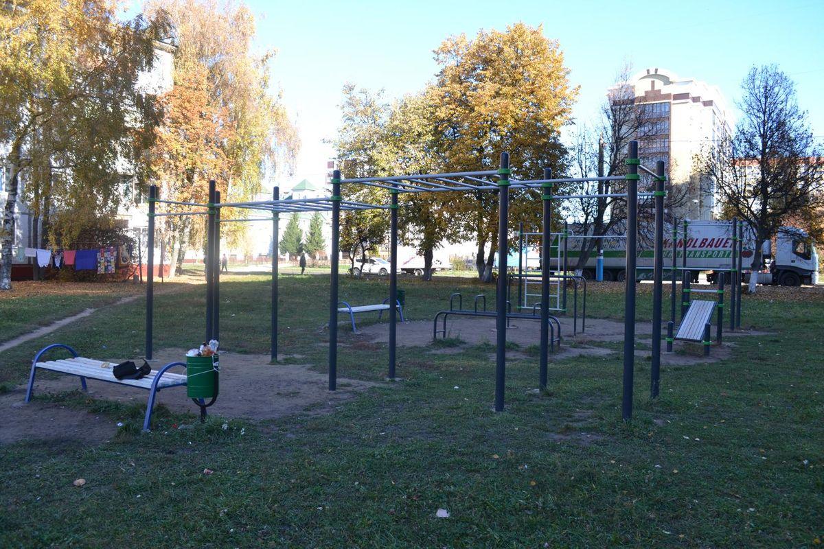 Bryansk - Calisthenics Park - Мэри Голд
