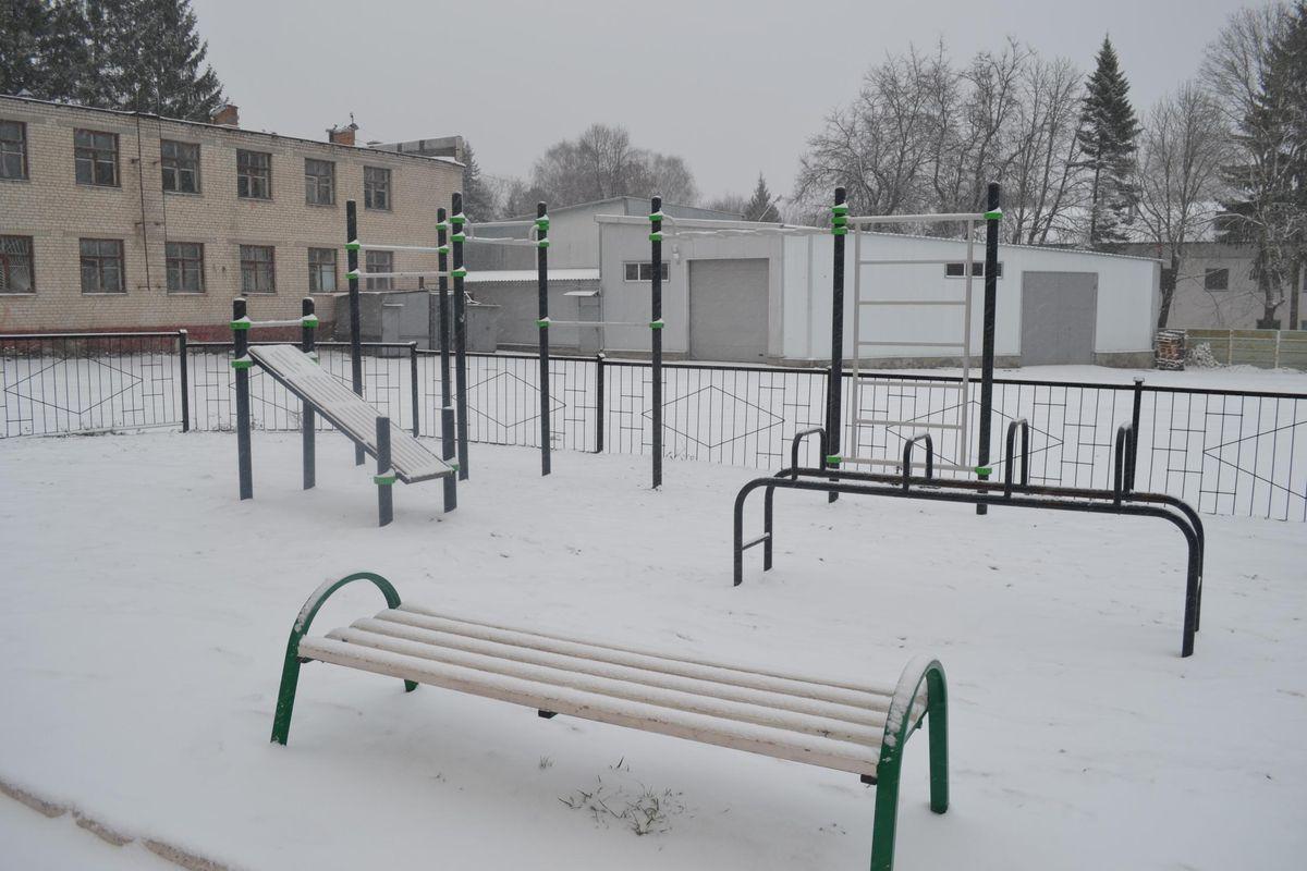 Michurinskoe - Street Workout Park - 241524