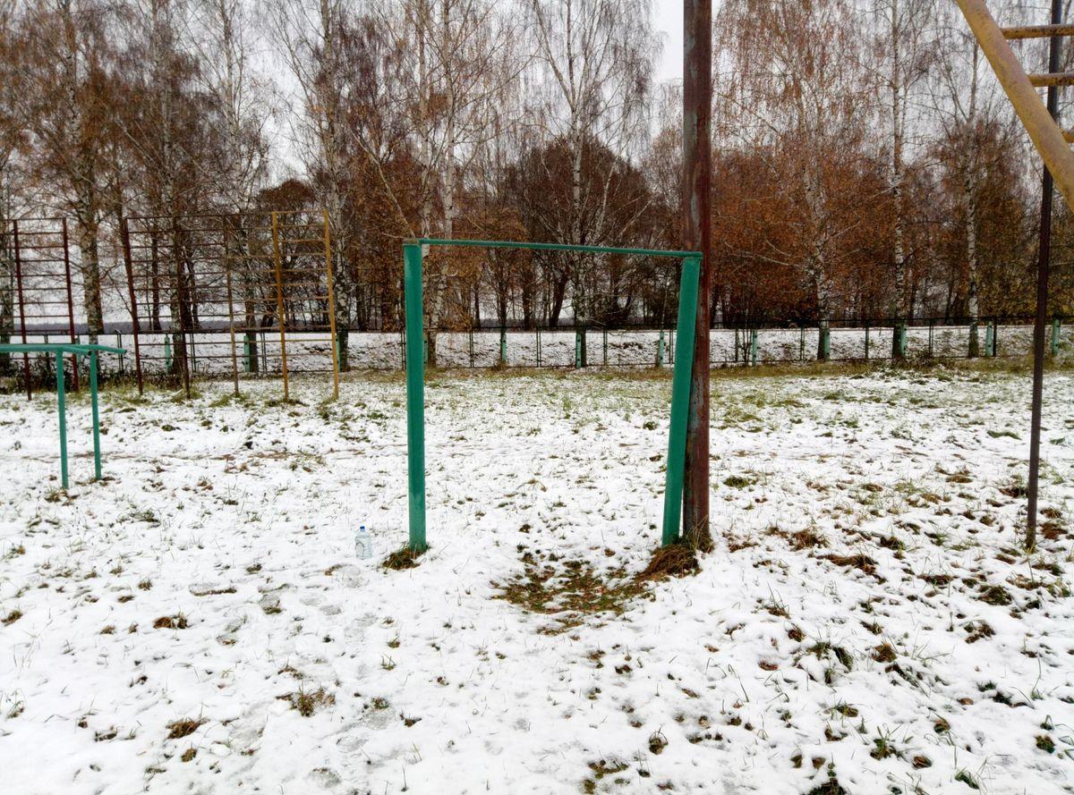 Gagarinskoe - Street Workout Park - 215033