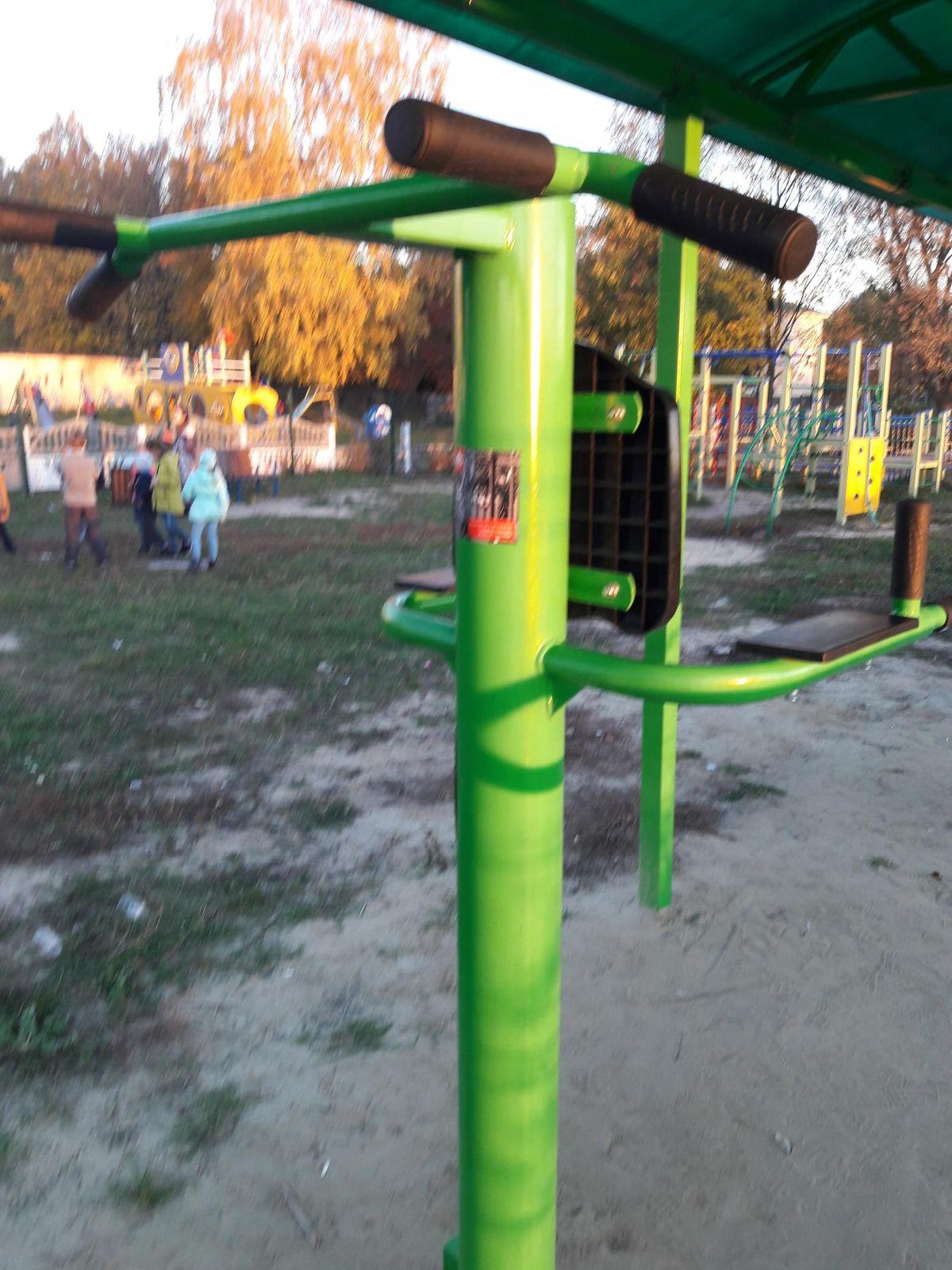 Dichnyansky - Street Workout Park - 307236