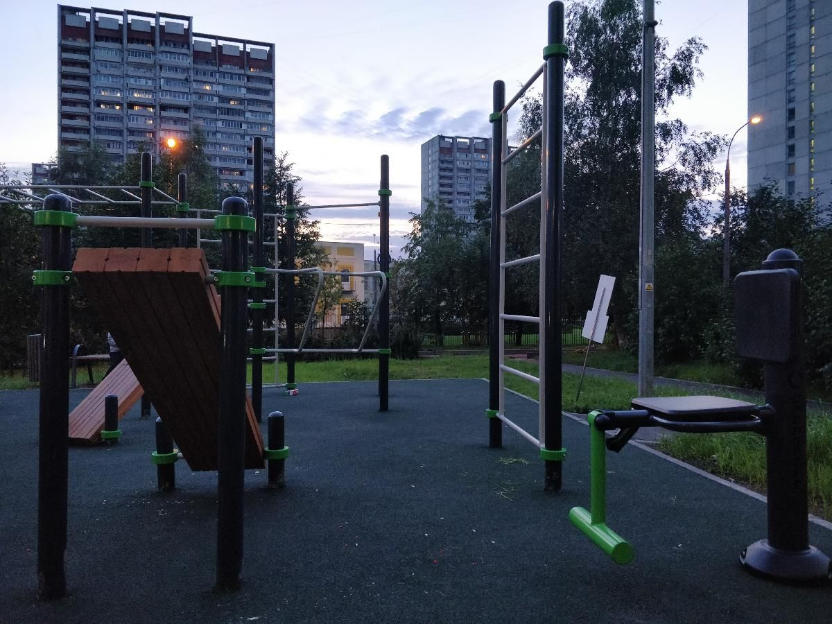Moscow - Outdoor Gym - 1106