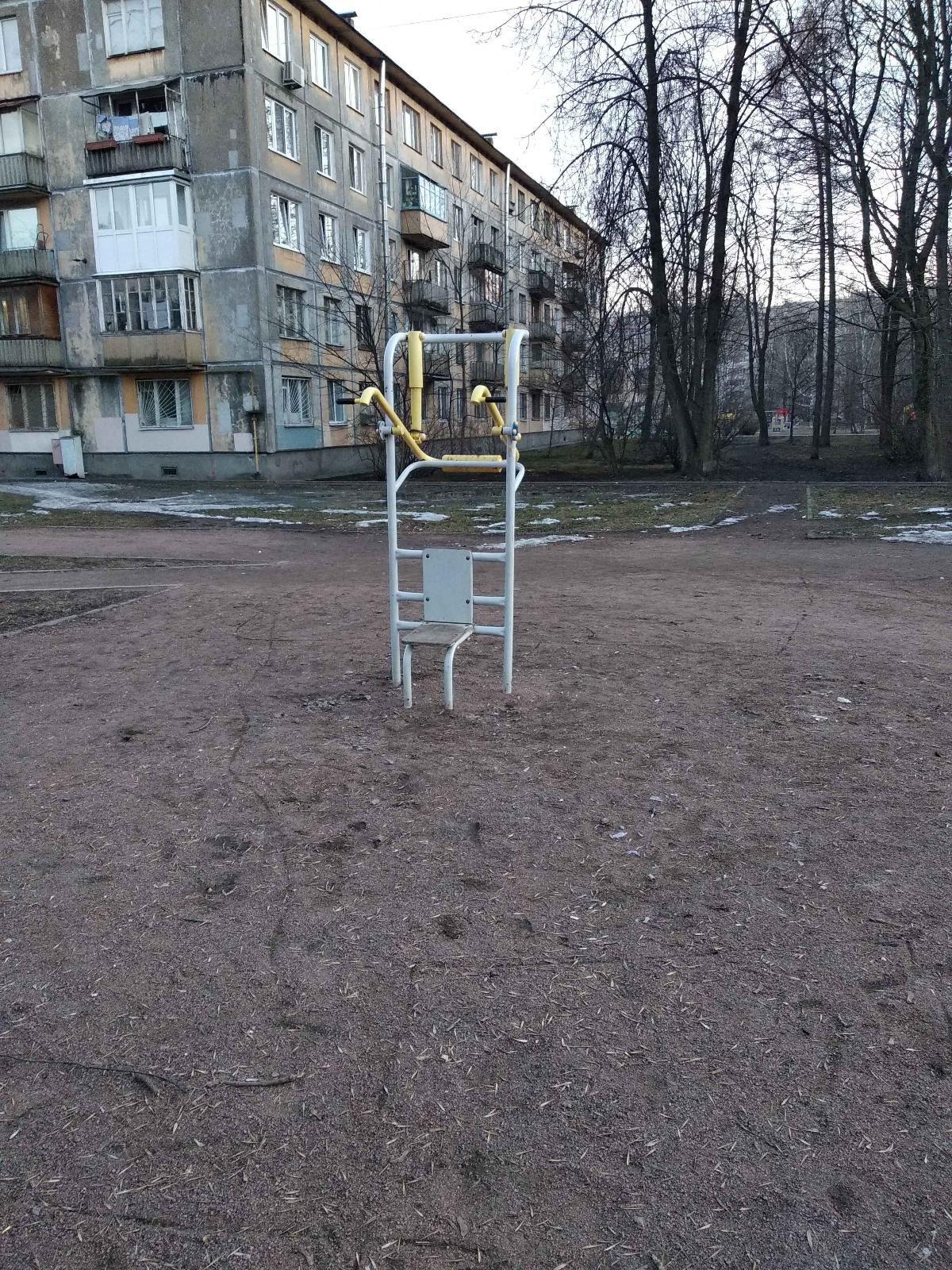 Saint Petersburg - Calisthenics Park - Замшина 28
