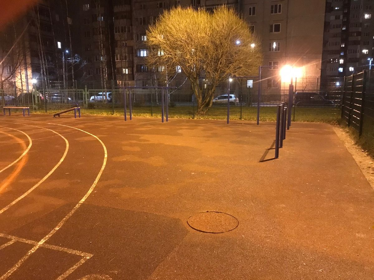Saint Petersburg - Calisthenics Gym - Афонская Улица