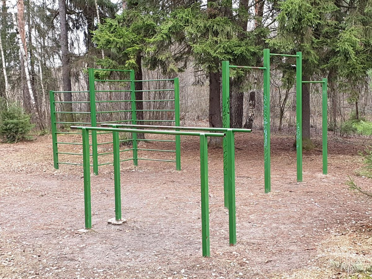 Ilinsky - Street Workout Park - Мымрик