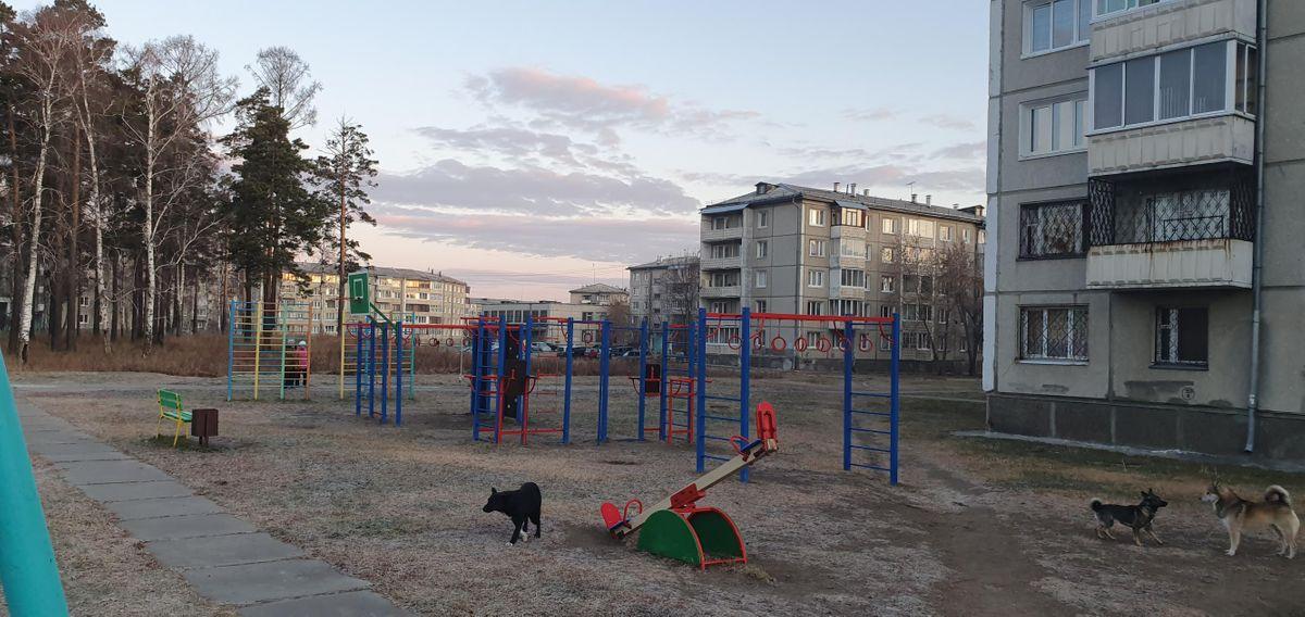 Angarsk - Calisthenics Gym - Колхозный Рынок