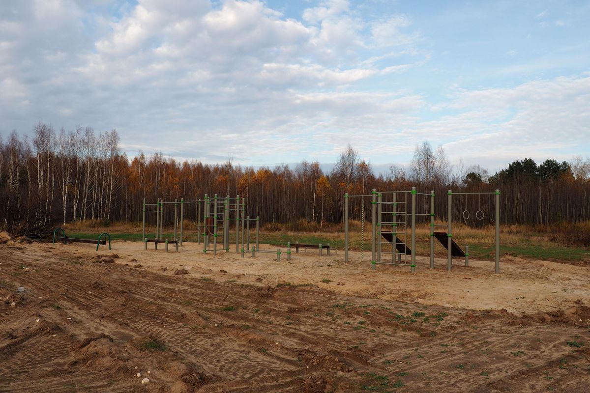 Zaborevskoe - Street Workout Park - 390531