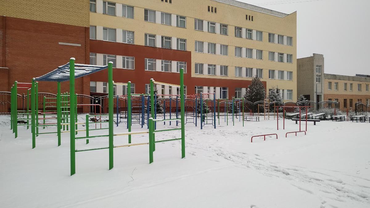 Bryansk - Street Workout Park - Лицей №1
