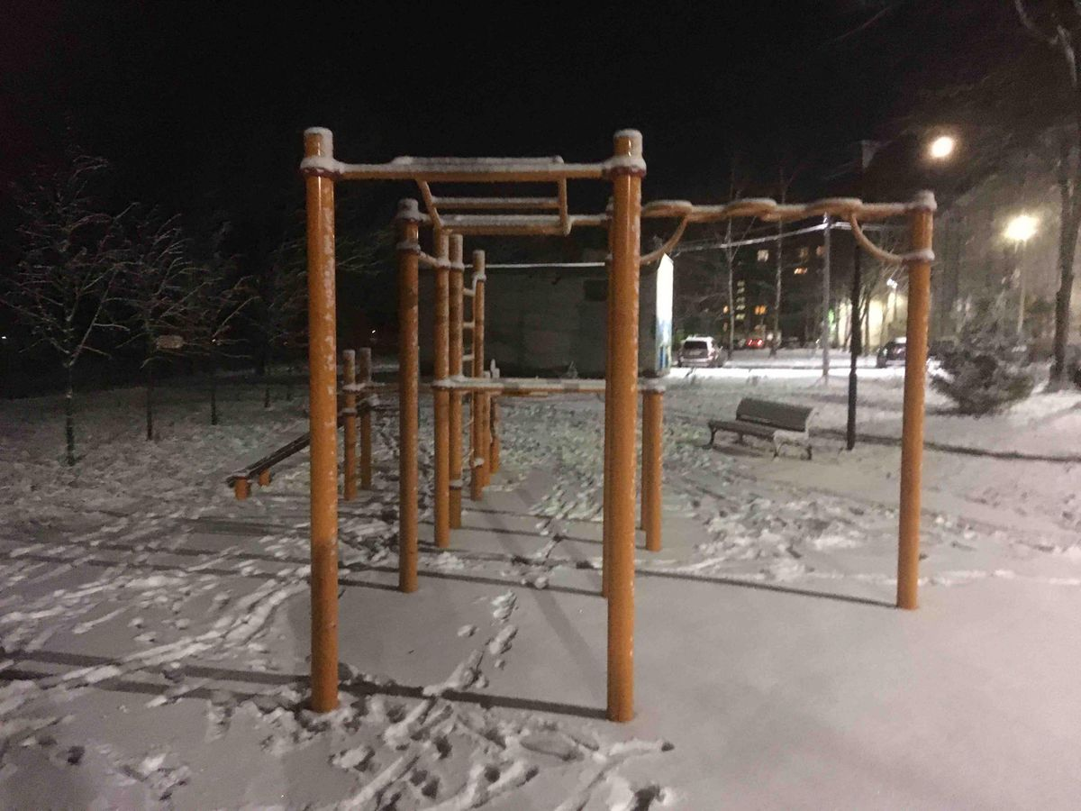 Gatchinskoe - Outdoor Gym - Колонна Орла