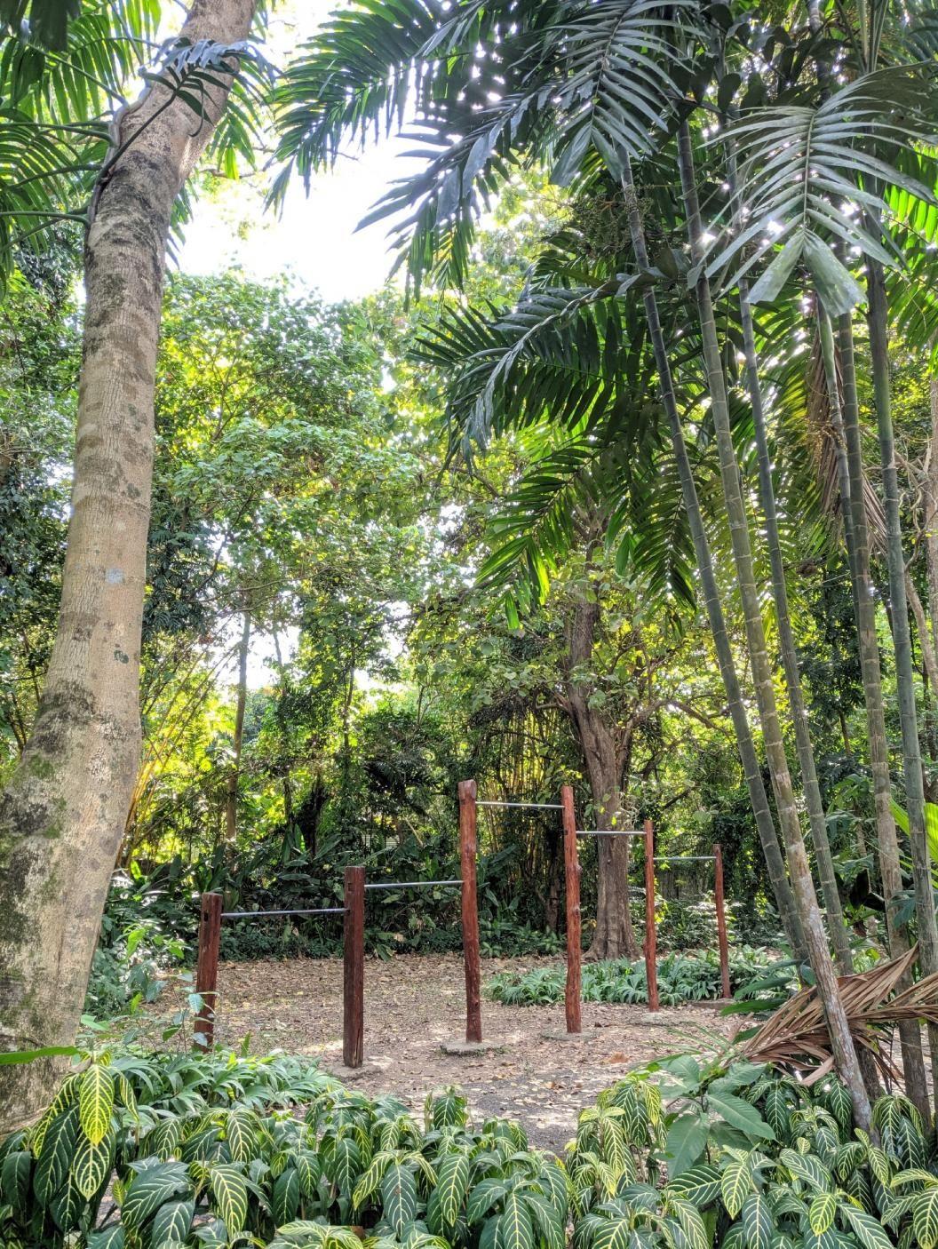 Quezon City - Street Workout Park - La Mesa Ecopark