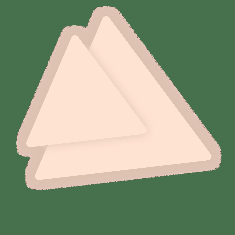 Polygon Illustration